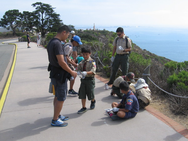 Many generous Boy and Girl Scouts volunteered to beautify Cabrillo National Monument during Operation Gum Drop Removal!