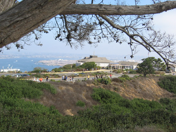 View of Cabrillo National Monument's Visitor Center from afar. I could see Scouts working hard throughout the park!