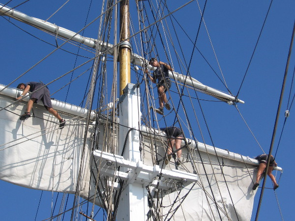 Nimble members of the Exy Johnson crew furl the tall ship's sails after a cruise on San Diego Bay.