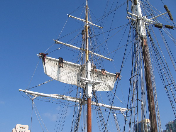 Securely furling the brigantine's square topsails high on the foremast takes muscle, coordination and concentration.