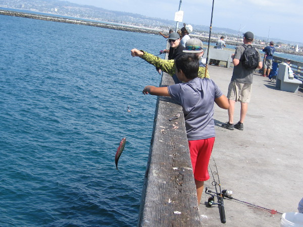 Some kids at the OB Pier's T-shaped end catch another nice mackerel!