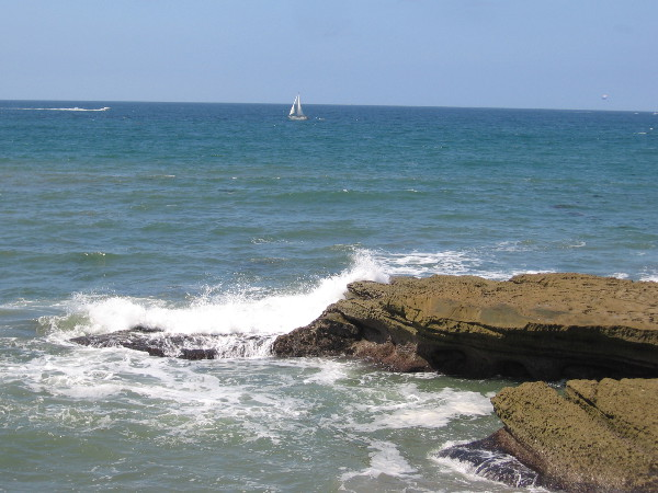 A white sailboat out on the wide blue Pacific Ocean.