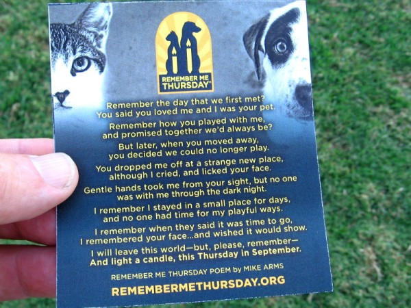 The deeply touching Remember Me Thursday poem by Mike Arms.