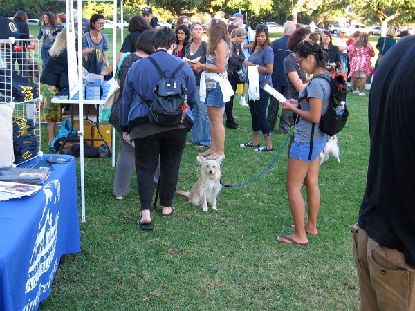 A gathering in Balboa Park and an urgent message. Millions of shelter animals around the world simply want to live and be loved.