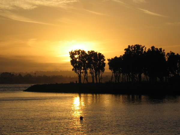 Sunset begins behind trees of Embarcadero Marina Park South.