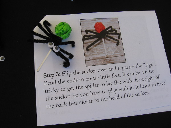 Anyone at the Japanese Friendship Garden could make a cool spider sucker holder using craftily bent black pipe cleaners.