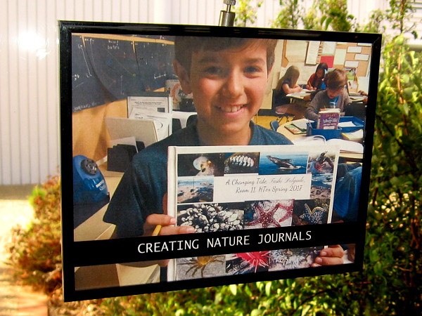 Students are encouraged to create nature journals. Writing is fun, too!