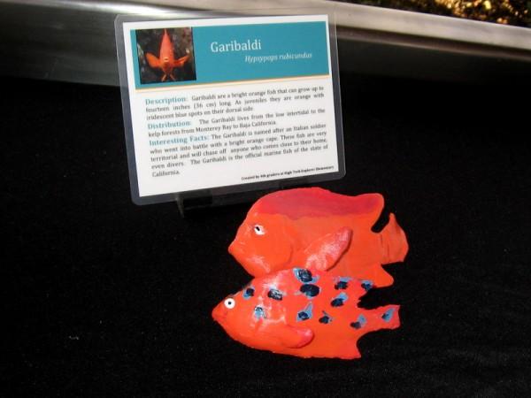 3D printed Garibaldi.