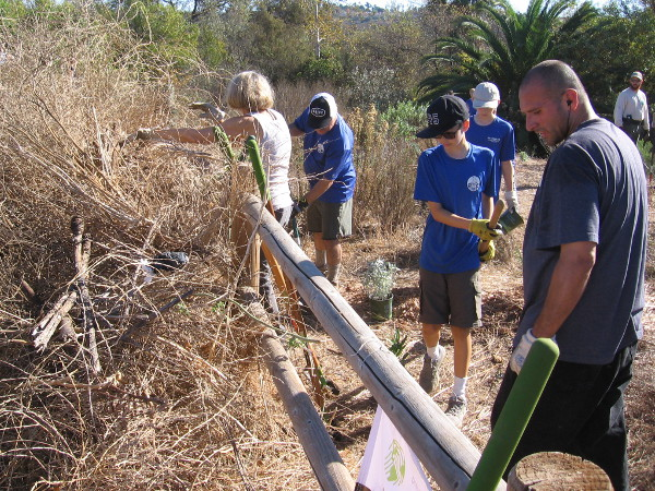 Hard-working volunteers remove non-native vegetation in a small part of the San Dieguito River Valley.