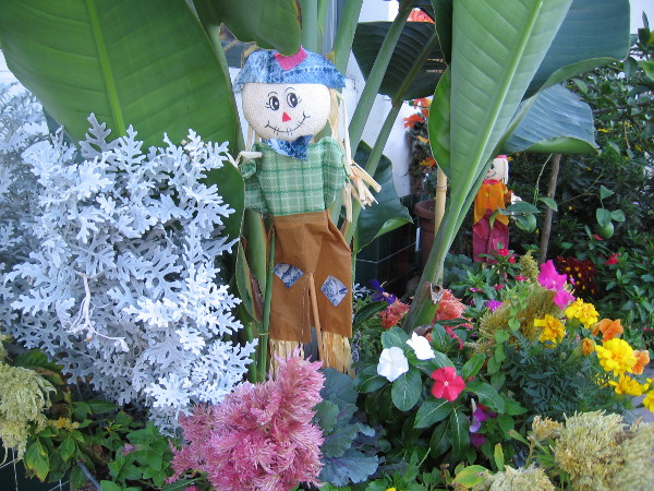 A couple of tiny smiling scarecrows occupy flower planters on India Street in Little Italy.