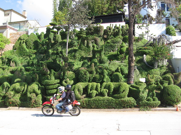 People ride past what is possibly the most amazing, fantastic front yard in all of San Diego!
