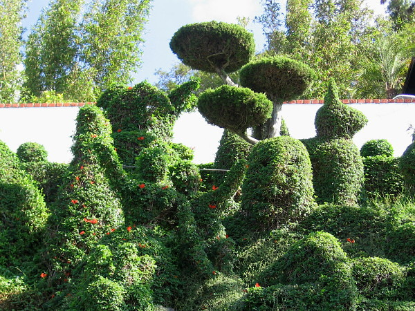 Perhaps the garden was inspired a bit by the fantastic worlds of Dr. Seuss, who lived in nearby La Jolla.