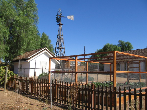 A small vegetable garden near the restored windmill and creamery.