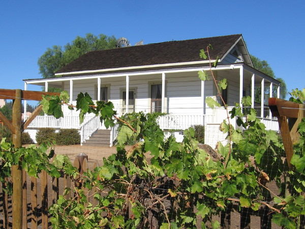 The Sikes Adobe Farmhouse rises behind a row of green grape vines.