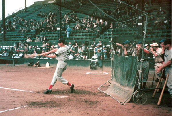 Action photo of Ted Williams used by Lisa Schirmer in one windglyph. Photographer: Heber Epperson. Courtesy of Autumn Durst Keltner.