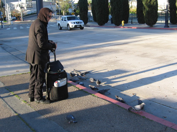 Someone waits on a sidewalk among pigeons early one morning in downtown San Diego.