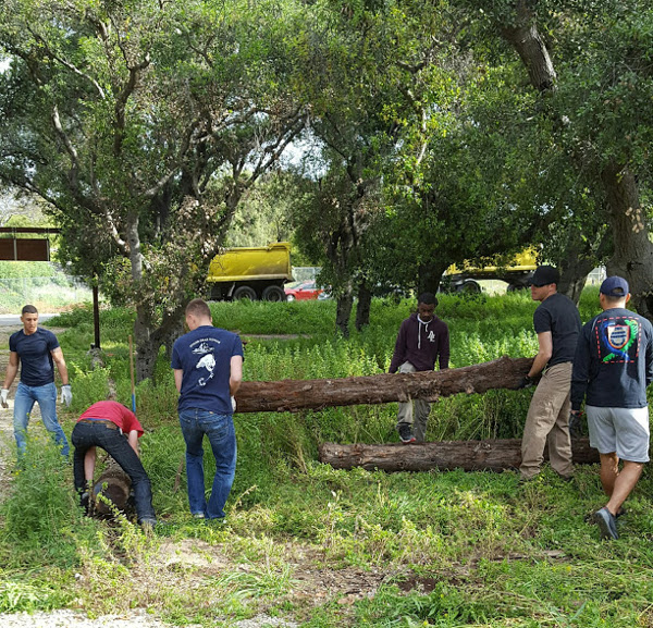 Crew members of USS Theodore Roosevelt help Boy Scout Maxwell Thomson move logs in the USS Bennington Memorial Oak Grove. Photo courtesy Kathleen Winchester.
