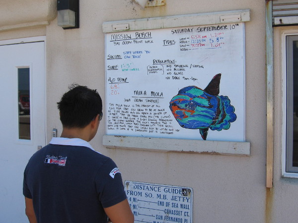 Someone reads daily information posted on Mission Beach's lifeguard station.