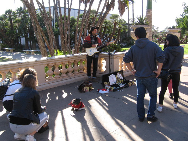 A small dog dressed like Santa attracts as much attention as the musician performing by the Balboa Park reflecting pool.