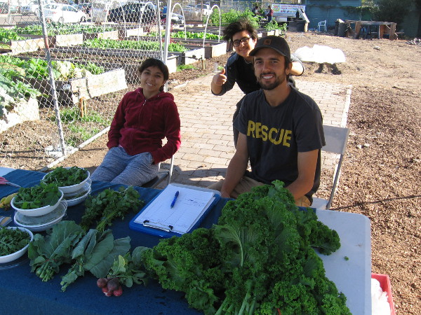 Refugee high school students grow and sell vegetables in North Park. They are Youth FarmWorks interns receiving a helping hand from the International Rescue Committee!
