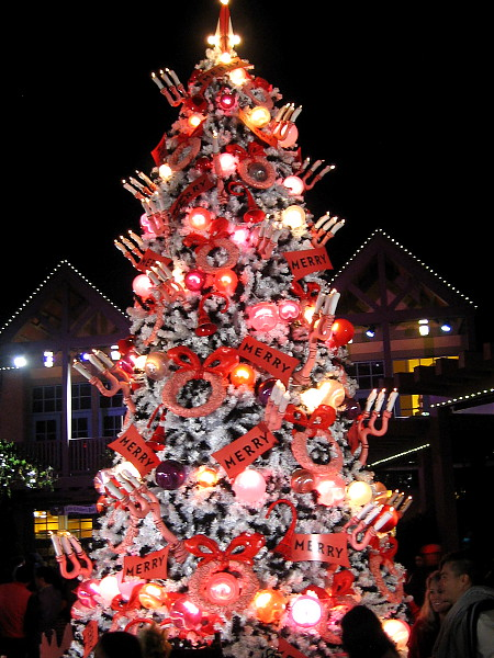 The bright Christmas tree at the Old Globe draws the eyes of old and young alike.