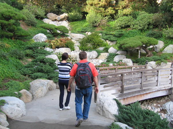Approaching the Dragon Bridge in the Japanese Friendship Garden.