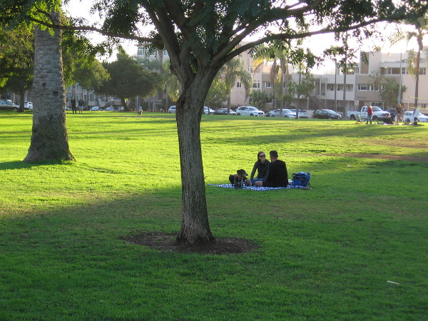 A picnic on green grass on the West Mesa.