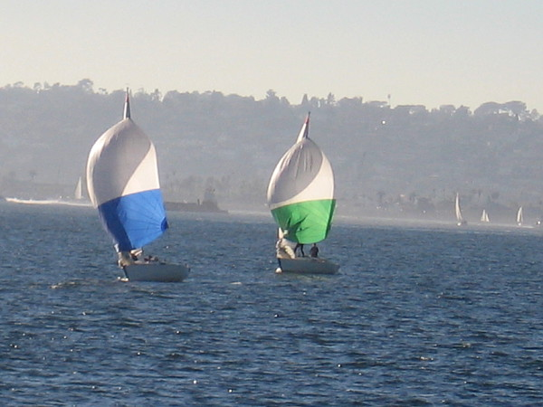 On a beautiful late January afternoon, many sailboats were gliding across San Diego Bay.