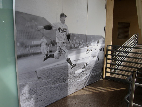 A series of photo murals along the upper level depict Padres history. This one from March 24, 1951 shows Whitey Wietelmann out at first base.