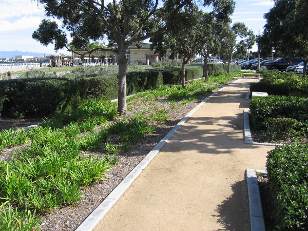 A few beautiful paths near Coronado's City Hall feature benches where one can rest and enjoy the day's sunshine.
