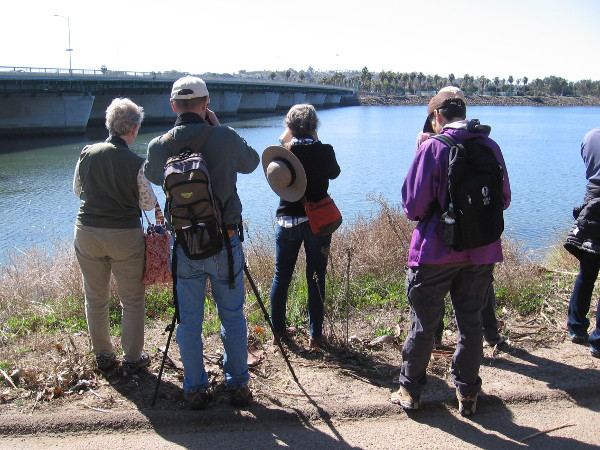 Members of the San Diego Audubon Society enjoy a perfect sunny day and identify lots of birds!