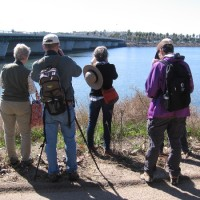 San Diego Audubon Society's fun Bird Festival!