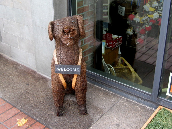 A friendly dog welcomes people walking past the front door of an East Village business.