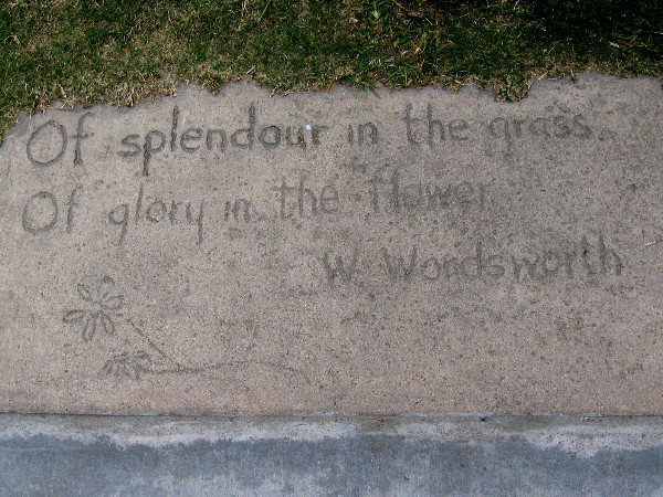 A bit of Wordsworth poetry and a flower etched into concrete. One of many cool sights during a walk down Avenida de la Playa.
