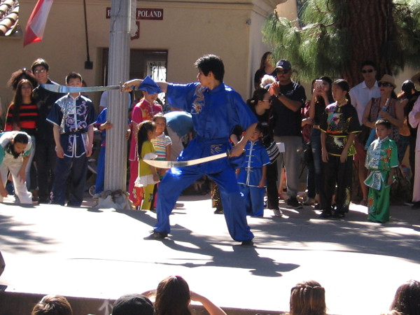 Energetic martial artists demonstrated various forms of Kung fu. Many routines seemed like precise athletic dances.