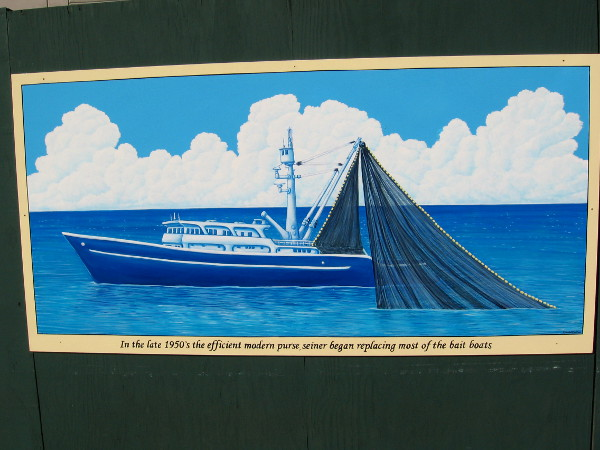 In the late 1950's the efficient modern purse seiner began replacing most of the bait boats.