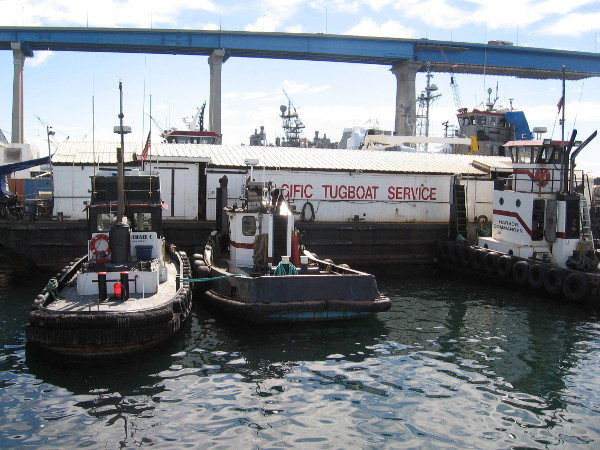 A few idle tugboats of the Pacific Tugboat Service.