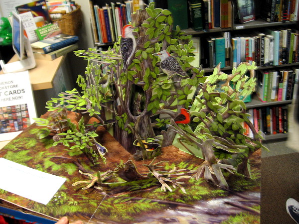I was shown this amazing pop-up book! Every page becomes a different habitat which plays realistic sound effects from nature!