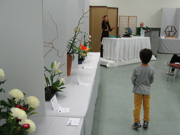 Exquisite flower arrangements at ikebana show cool san