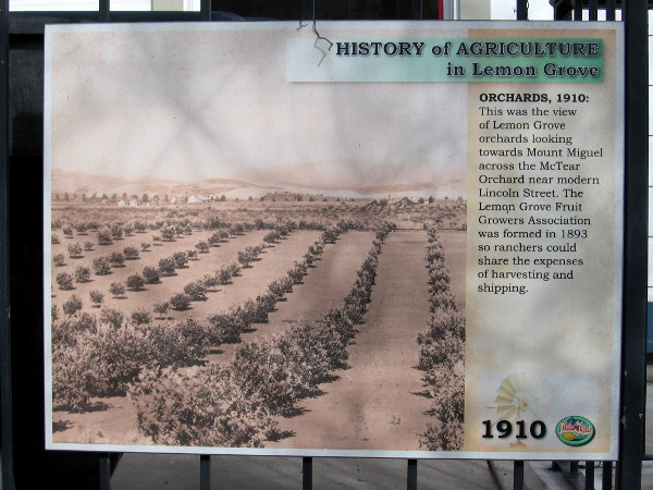 Another sign contains a view of Lemon Grove orchards looking towards Mount Miguel across the McTear Orchard in 1910.