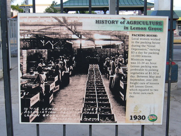Another sign features a photo of local women working in the packing house during the Great Depression. During peak season 2-3 railroad cars would be packed with lemons per day.
