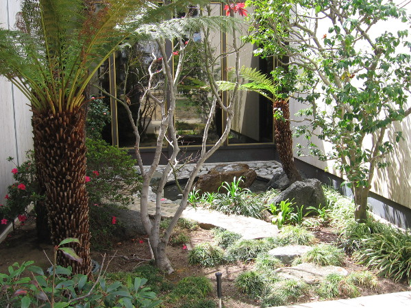 This small garden by one large museum window was created in 1983 by a Japanese master designer.
