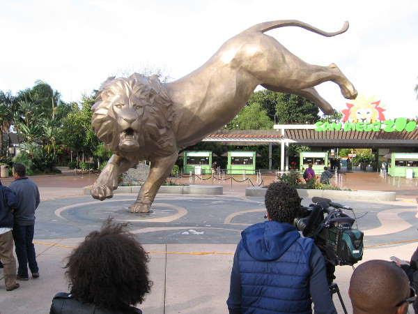 Reporters and lovers of the zoo have gathered for a special dedication ceremony on Sunday morning.