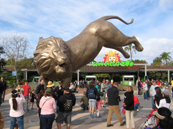 Rex the Lion, inspiration for the San Diego Zoo's creation, now lives eternally in Balboa Park!