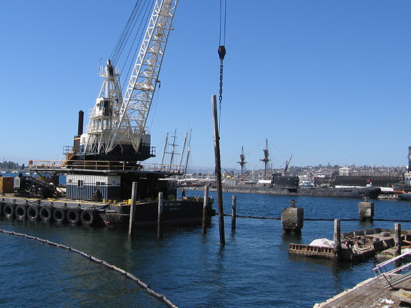 An old pile once used to support Anthony's Fish Grotto on San Diego's Embarcadero is removed with a large crane.