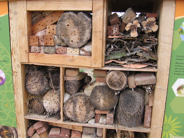Anyone can create a cool beehouse for their garden. All you really need is a drill!