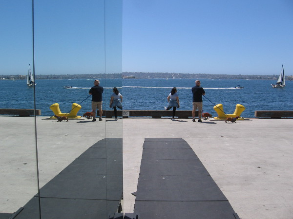 Cool new optical public art in San Diego. The outdoor installation can be found on Broadway Pier through next weekend.