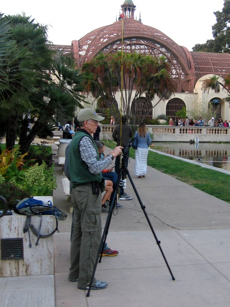 As evening approaches, people slowly gather by the Balboa Park lily pond to watch for bats. The event was organized by the San Diego Natural History Museum.