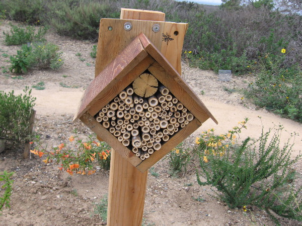 Feeling inspired? Handy with a hammer and nails? Make your beehouse into a cool work of art!