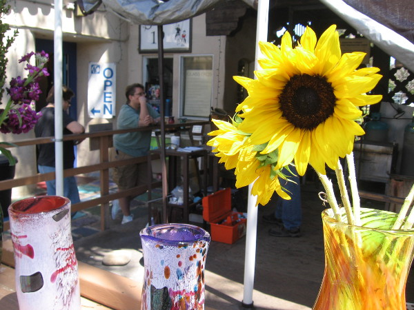 Bright yellow sunflowers in hand blown glass vases in Spanish Village Art Center.